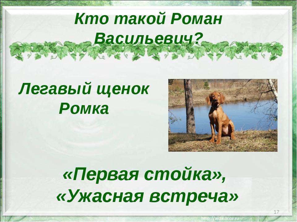 Кто такой Роман Васильевич? * Легавый щенок Ромка «Первая стойка», «Ужасная в...