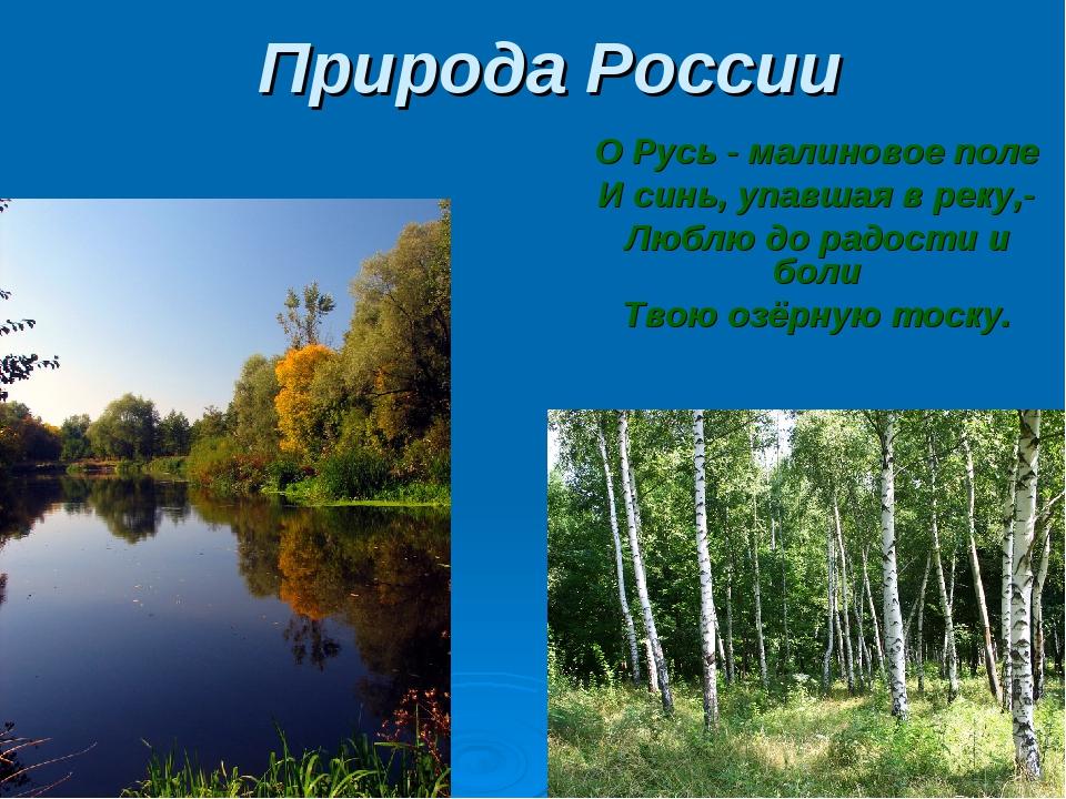 Природа России О Русь - малиновое поле И синь, упавшая в реку,- Люблю до радо...