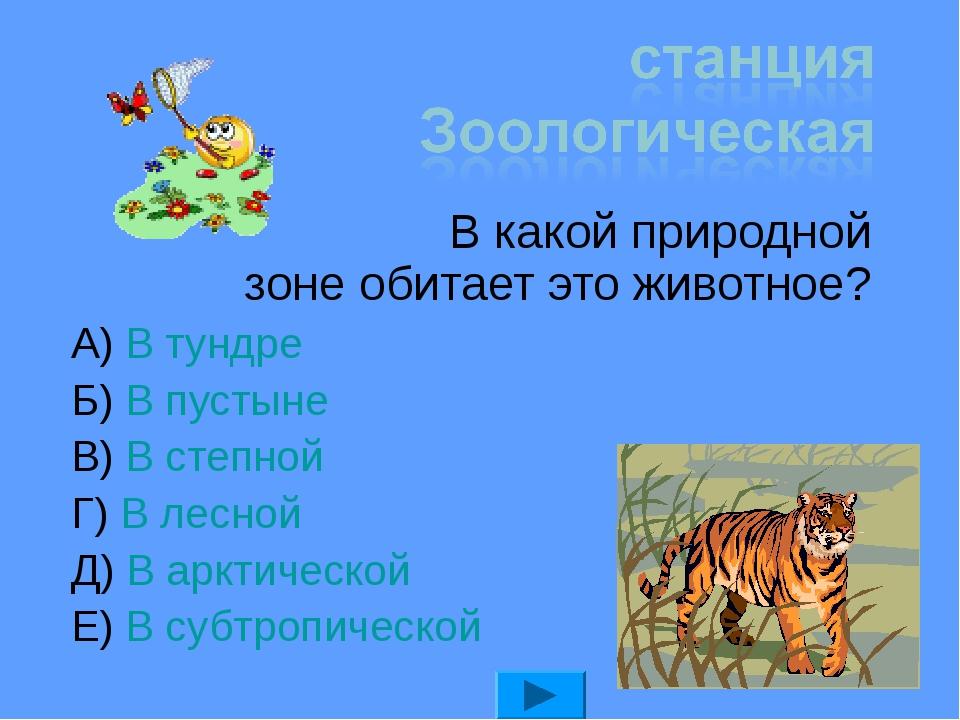 В какой природной зоне обитает это животное? А) В тундре Б) В пустыне В) В с...
