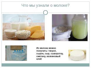 Что мы узнали о молоке? Из молока можно получить: творог, сырок, сыр, сыворот
