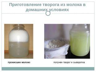 Приготовление творога из молока в домашних условиях прокисшее молоко получен