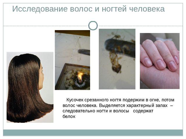 Исследование волос и ногтей человека Кусочек срезанного ногтя подержим в огне...