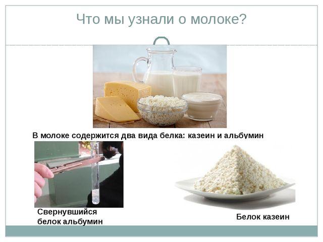 Что мы узнали о молоке? В молоке содержится два вида белка: казеин и альбумин...