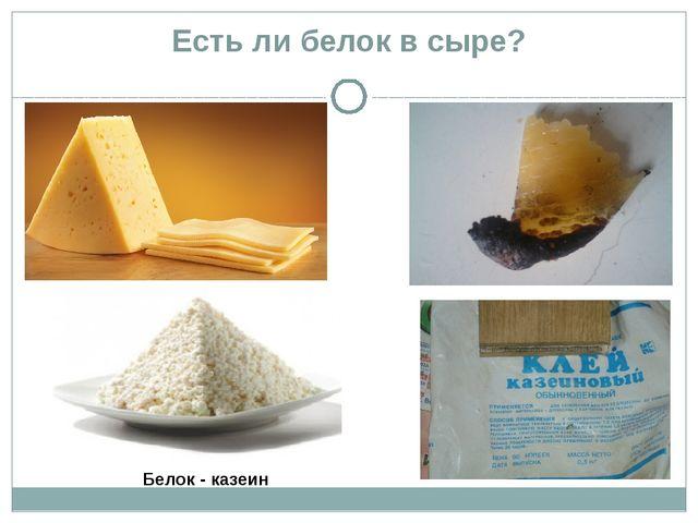 Есть ли белок в сыре? с Белок - казеин