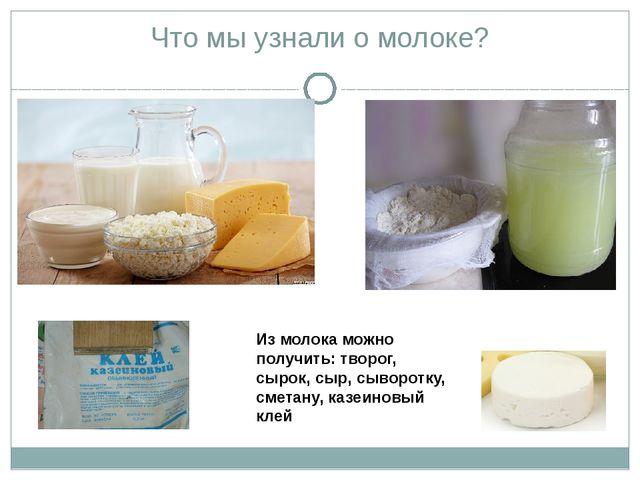 Что мы узнали о молоке? Из молока можно получить: творог, сырок, сыр, сыворот...