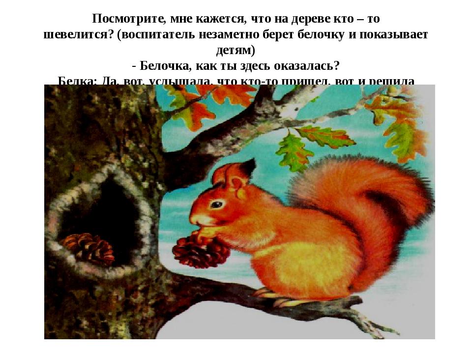 Посмотрите, мне кажется, что на дереве кто – то шевелится?(воспитатель незам...