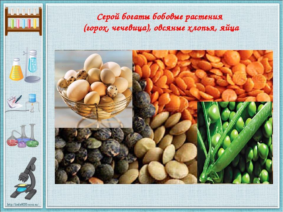 Серой богаты бобовые растения (горох, чечевица), овсяные хлопья, яйца http://...
