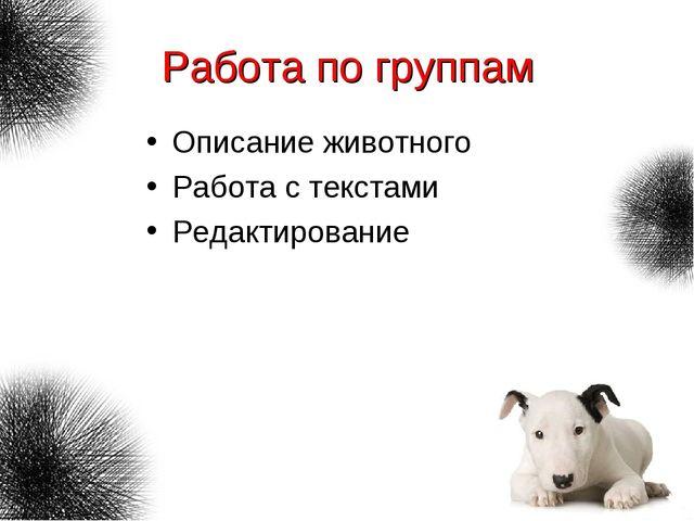 Работа по группам Описание животного Работа с текстами Редактирование