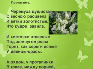 Прочитайте. Черемуха душистая С весною расцвела И ветки золотистые, Что кудри