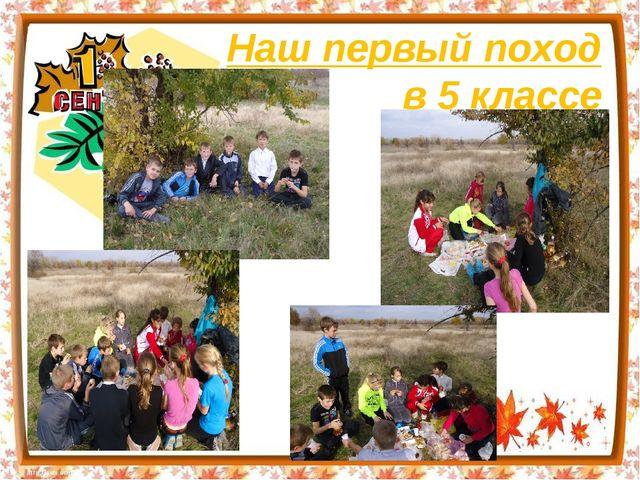 Наш первый поход в 5 классе