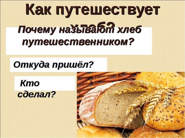 Как путешествует хлеб? Почему называют хлеб путешественником? Откуда пришёл?...