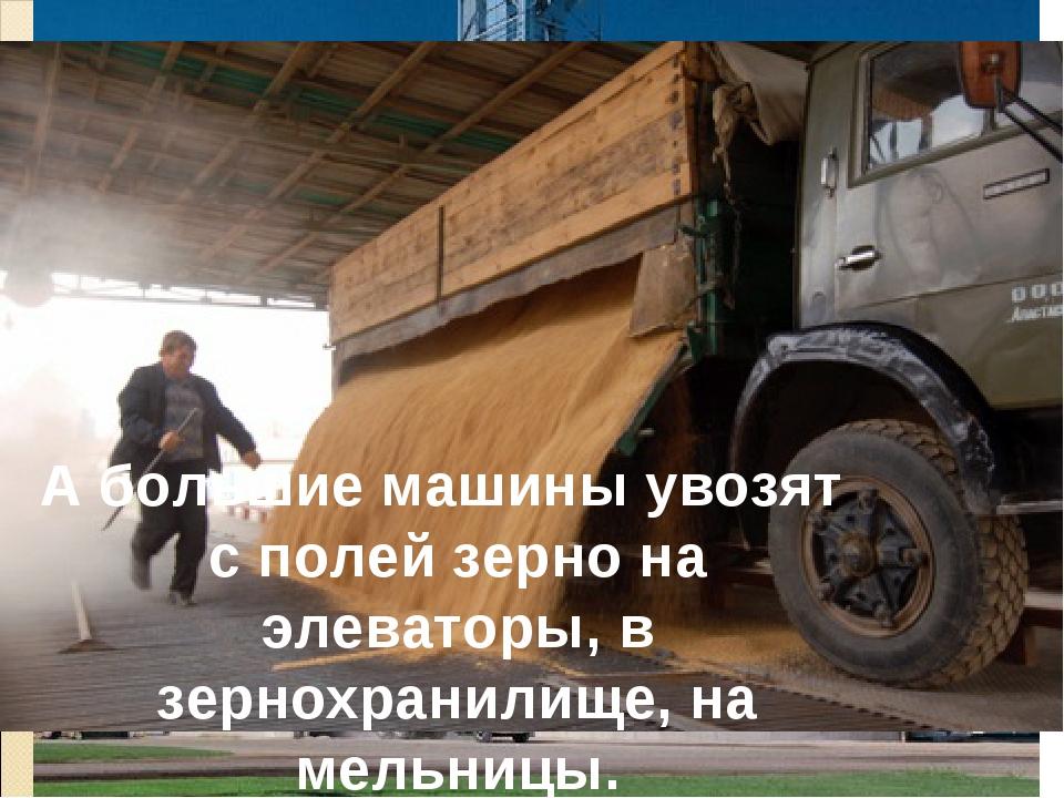 А большие машины увозят с полей зерно на элеваторы, в зернохранилище, на мель...