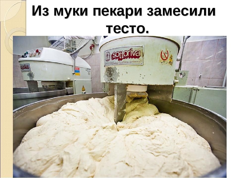 Из муки пекари замесили тесто.