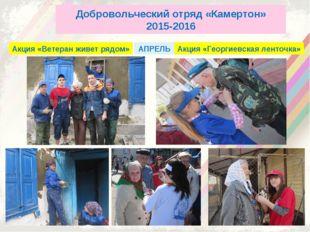Добровольческий отряд «Камертон» 2015-2016 Акция «Ветеран живет рядом» Акция