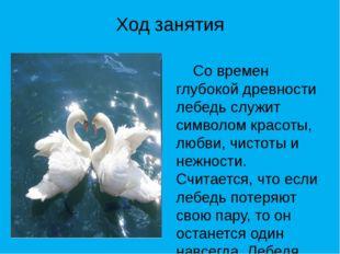 Ход занятия Со времен глубокой древности лебедь служит символом красоты, любв
