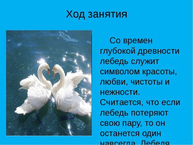 Ход занятия Со времен глубокой древности лебедь служит символом красоты, любв...