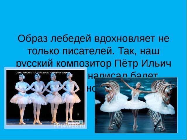 Образ лебедей вдохновляет не только писателей. Так, наш русский композитор П...