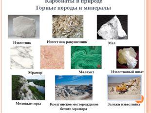 Карбонаты в природе Горные породы и минералы Известняк Известняк ракушечник М