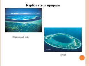 Карбонаты в природе Коралловый риф Атолл