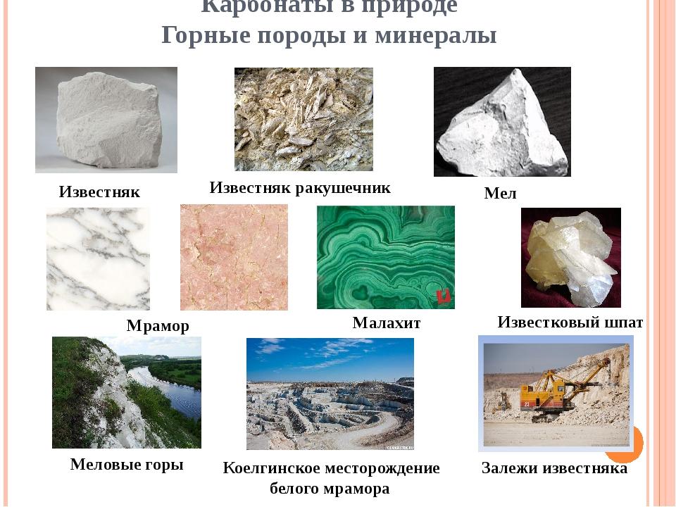 Карбонаты в природе Горные породы и минералы Известняк Известняк ракушечник М...