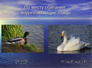 По месту обитания: водоплавающие птицы