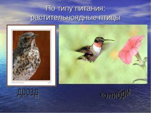 По типу питания: растительноядные птицы