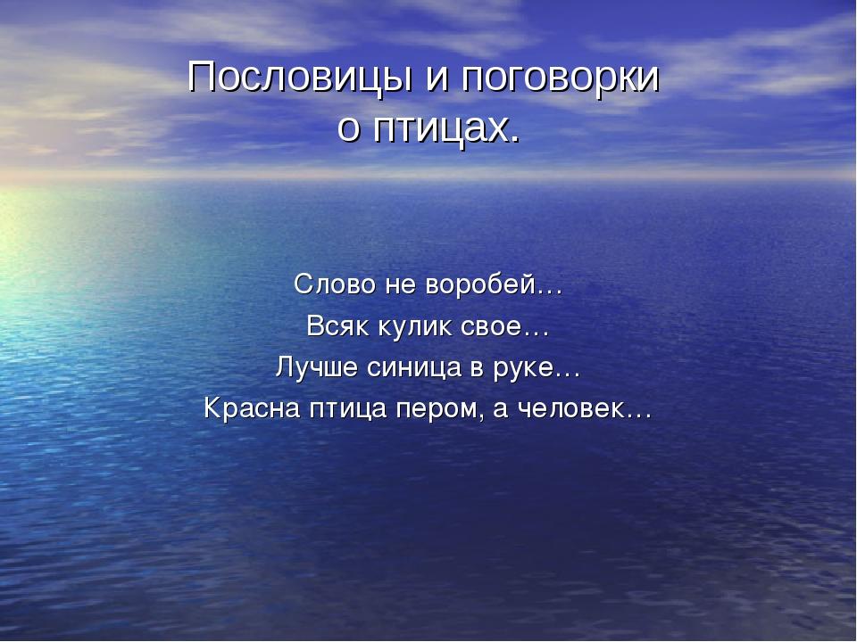 Пословицы и поговорки о птицах. Слово не воробей… Всяк кулик свое… Лучше сини...