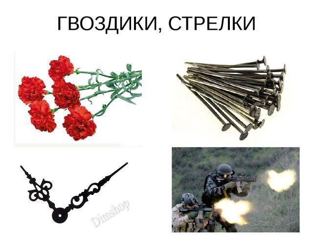 ГВОЗДИКИ, СТРЕЛКИ