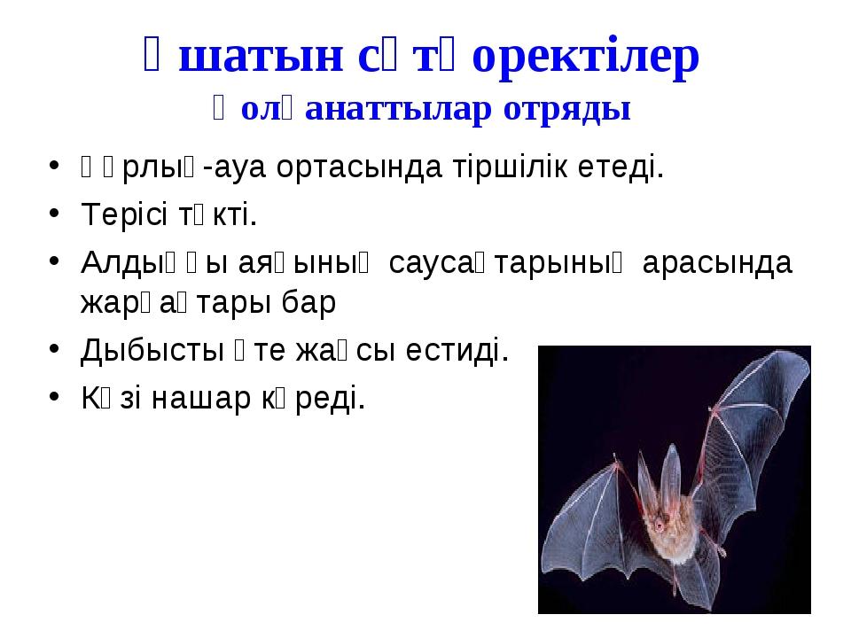 Ұшатын сүтқоректілер Қолқанаттылар отряды Құрлық-ауа ортасында тіршілік етеді...