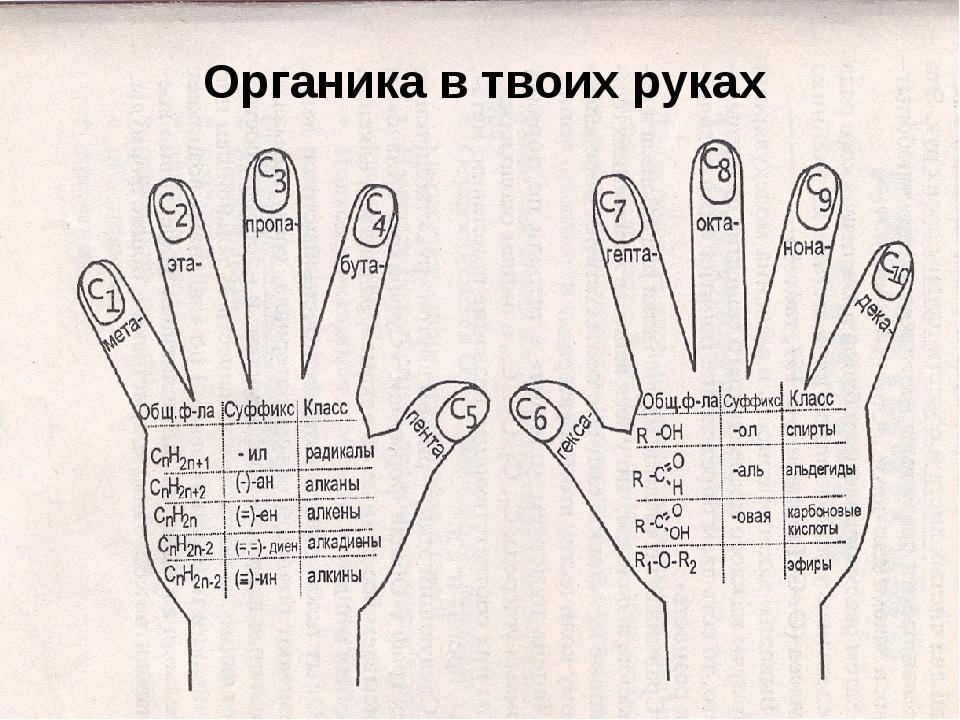 Органика в твоих руках