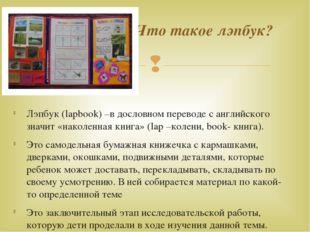 Лэпбук (lapbook) –в дословном переводе с английского значит «наколенная книг