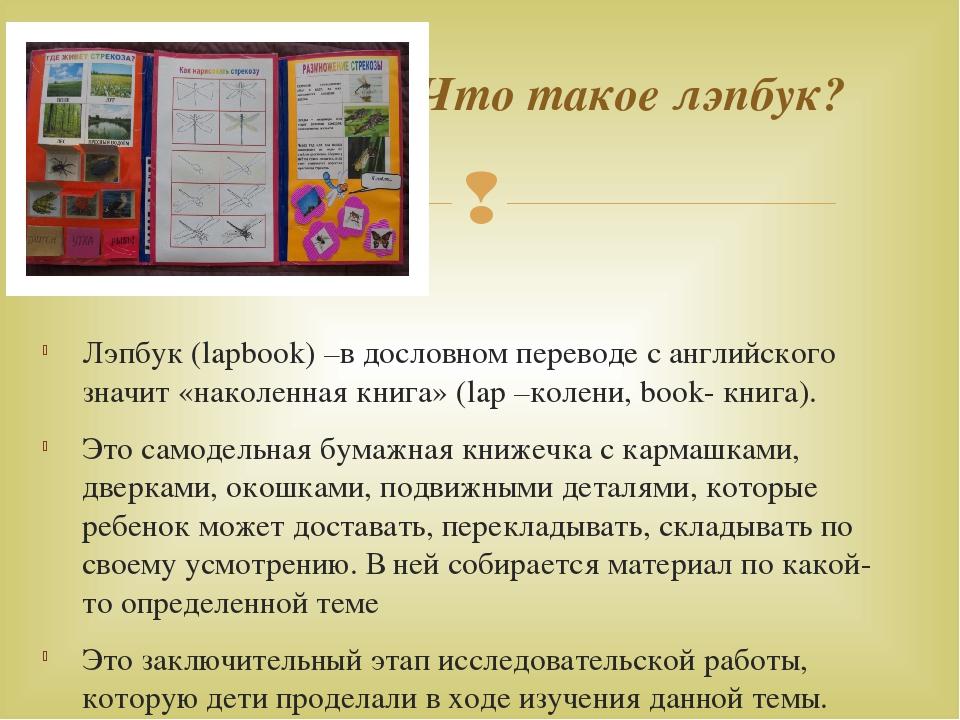 Лэпбук (lapbook) –в дословном переводе с английского значит «наколенная книг...