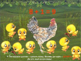 У Пеструшки цыплят – целый отряд. Восемь да один – ДЕВЯТЬ. Да это ещё не все