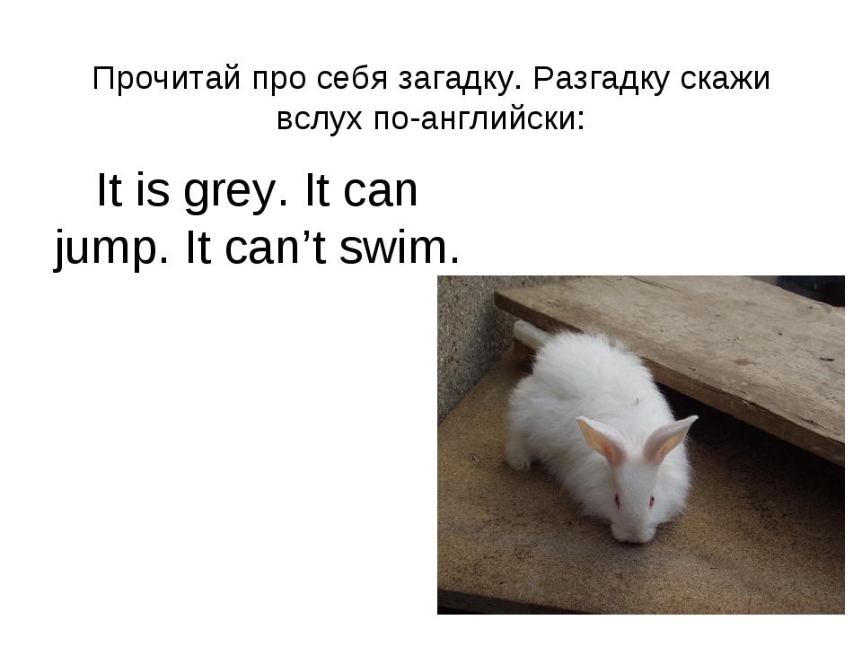Прочитай про себя загадку. Разгадку скажи вслух по-английски: It is grey. It...