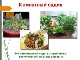 Это миниатюрный сади, который может располагаться на столе или окне Комнатный