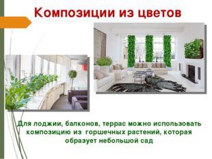 Для лоджии, балконов, террас можно использовать композицию из горшечных расте