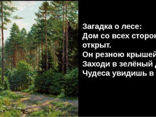 Загадка о лесе: Дом со всех сторон открыт. Он резною крышей крыт. Заходи в зе