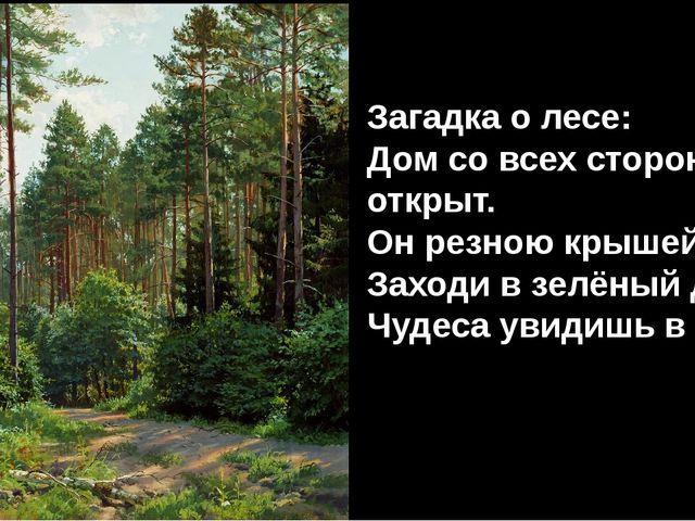 Загадка о лесе: Дом со всех сторон открыт. Он резною крышей крыт. Заходи в зе...