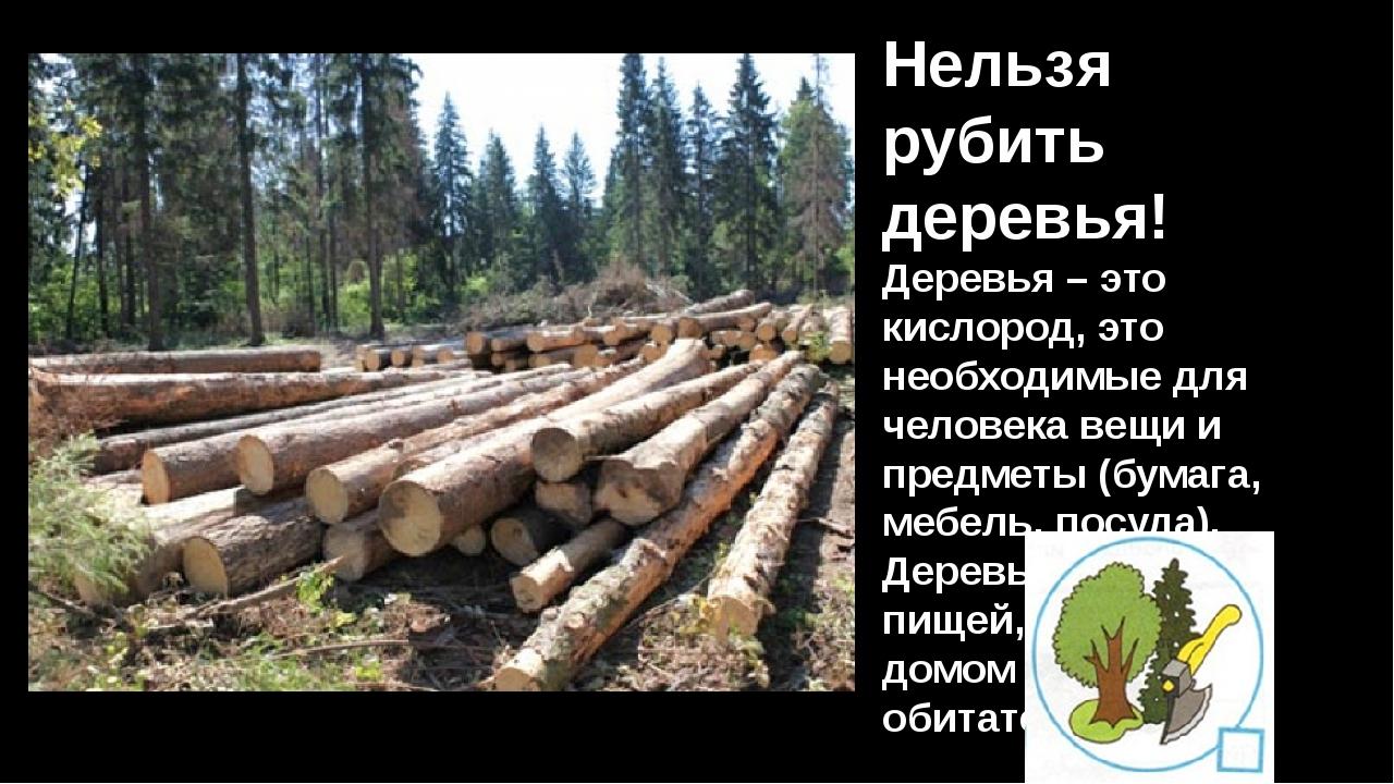 Нельзя рубить деревья! Деревья – это кислород, это необходимые для человека в...