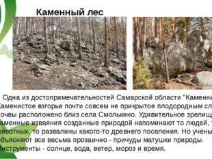 """Каменный лес Одна из достопримечательностей Самарской области """"Каменный лес""""."""