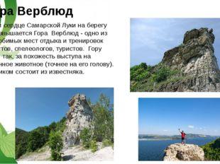 гора Верблюд В самом сердце Самарской Луки на берегу Волги возвышается Гора В