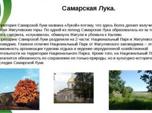 Территория Самарской Луки названа «Лукой» потому, что здесь Волга делает излу