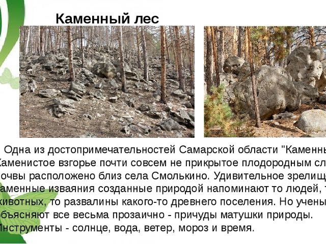 """Каменный лес Одна из достопримечательностей Самарской области """"Каменный лес""""...."""