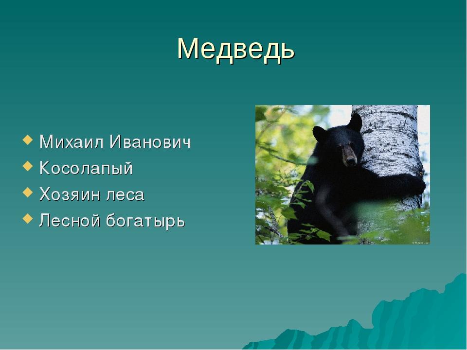 Медведь Михаил Иванович Косолапый Хозяин леса Лесной богатырь