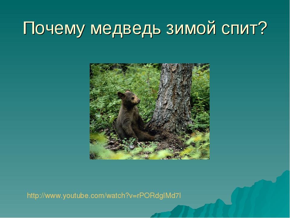Почему медведь зимой спит? http://www.youtube.com/watch?v=rPORdgIMd7I