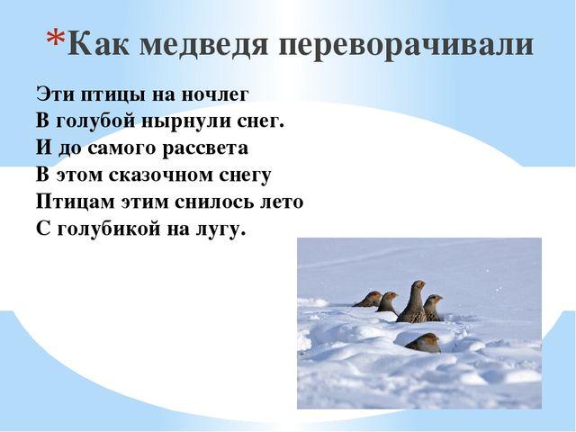 Эти птицы на ночлег В голубойнырнулиснег. И до самого рассвета В этом сказо...