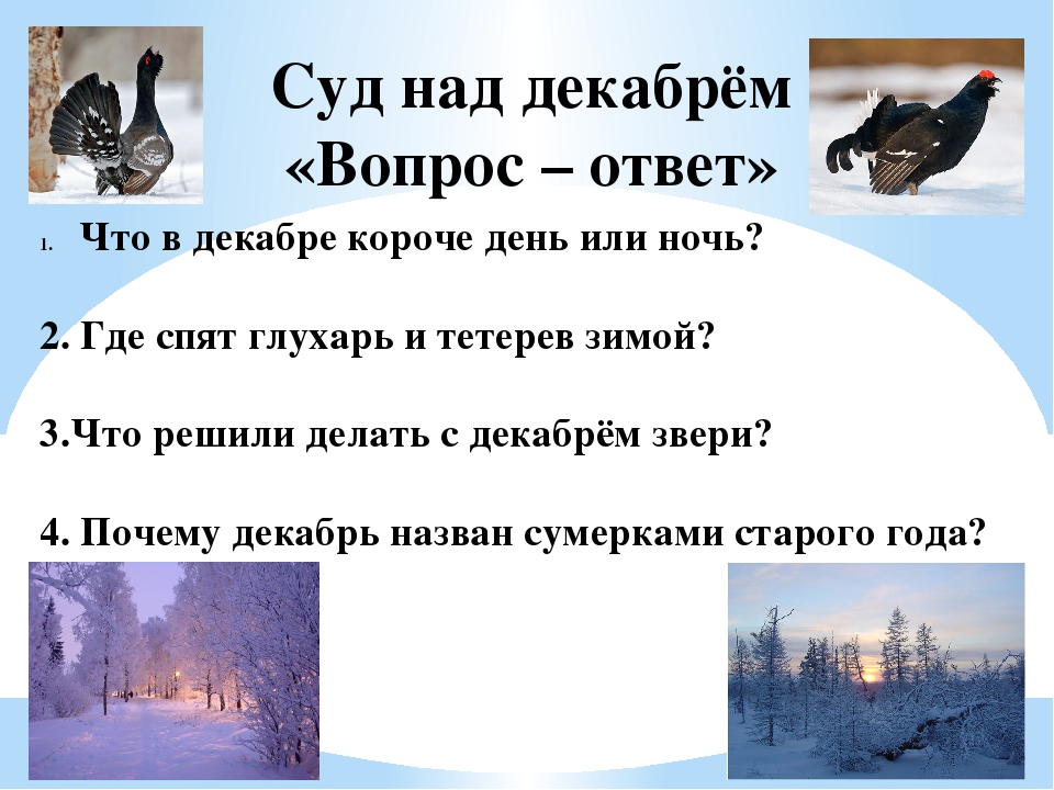 Суд над декабрём «Вопрос – ответ» Что в декабре короче день или ночь? 2. Где...