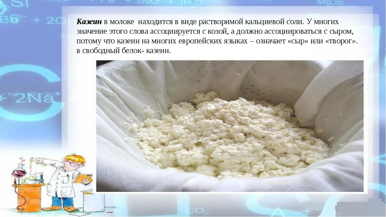 Казеин в молоке находится в виде растворимой кальциевой соли. У многих значен...