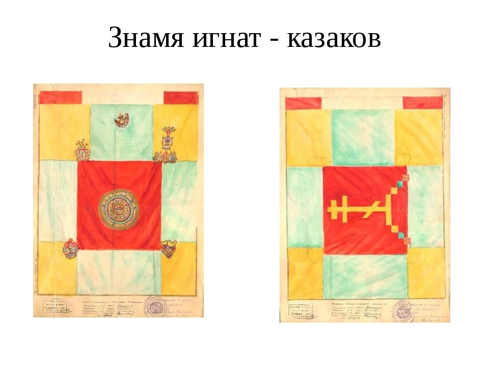 Знамя игнат - казаков