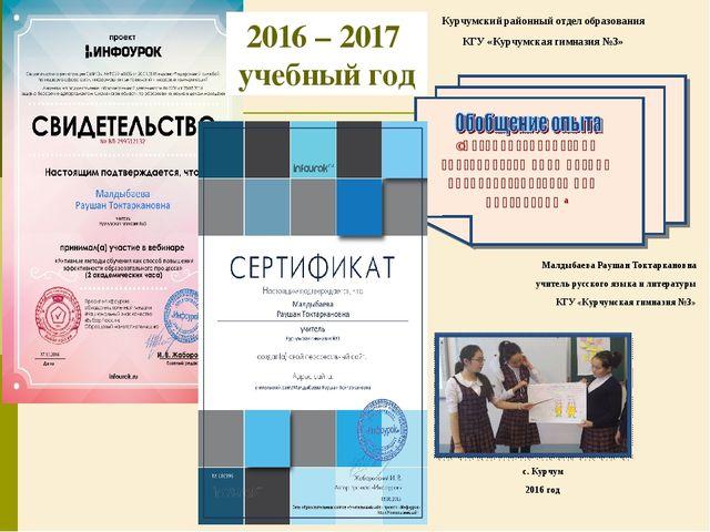 2016 – 2017 учебный год